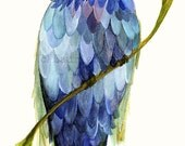 Bluebird Watercolor Painting Bird Nature Art Reproduction Giclee Print