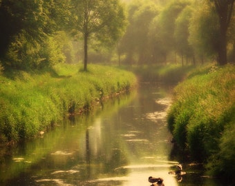 Nature Scenery Photography, Forest, River, Reflection, Woodland, Trees, Enchanted, Green, Fairytale - River of Dreams