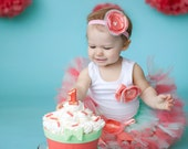 Cake Smash Tutu Dress, Coral Mint Birthday Tutu Dress