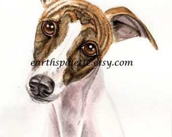 Whippet. dog painting, 51/2x8 original watercolor painting, dogs, pet portraits, art, earthspalette