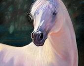 Horse Art Print, White Horse Art, Horse Lover Gift, Horse Wall Art