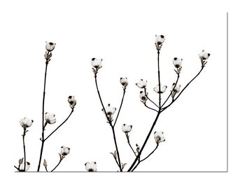 White Flowers Cottage Wedding Art Print Dogwood Botanical Black White Minimalist