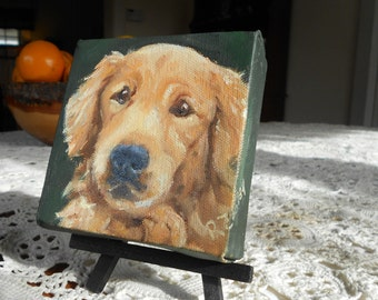 Tiny Custom Pet Portrait Oil Painting, Golden Retriever Painting or any breed by me, Custom Dog Portrait