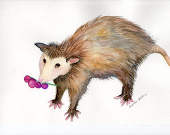 Possum painting, possum original watercolor painting, possum with grapes watercolor painting, Opossum wall art