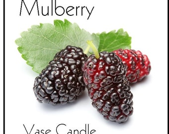 Mulberry Vase Candle 2.8 oz Wax Melts - Highly Scented, Hand Poured Fresh, Premium Paraffin Soy Blend Wax Tarts, 25 Hour, Color Free