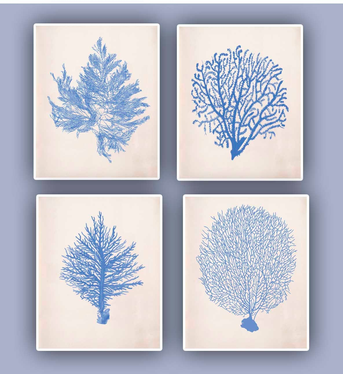 Nautical prints Sea Coral fan prints modern vintage inspired