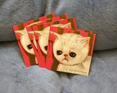 Set of 5 stickers allergic kitty cat persian exotic shorthair white