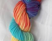 SALE RAINBOW TASTIC chunky weight superwash merino Bare Sheep Yarn Company