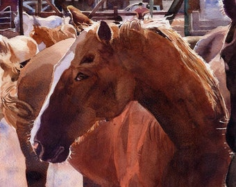 PRINT  Quarter Horse Art Morgan Warmblood horse from my watercolor Painting