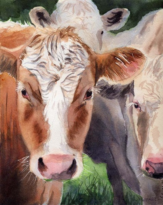 Hereford cow art print of my watercolor painting farm large for Cow painting print