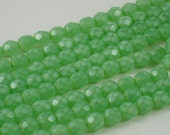 Czech Glass Beads SALE (GB71) 25 Opal Luster Mint Fire Polished Faceted Round