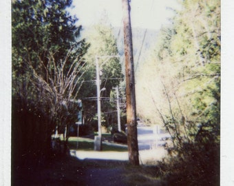 Two / Greeting Cards /  Trail At Princess Ave // atmosphere
