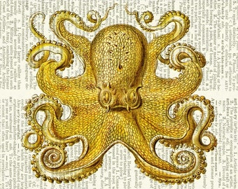 octopus II dictionary page print