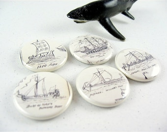 5 Nautical Sailing Boat Ships Fridge Magnets Shark Home & Living, Organization, Kitchen magnabilities  no. 2 1152