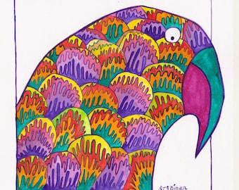 Parrot, Parrot Art, Parrot Print, Shell Parrot, Bright Shell Parrot, Wild Parrot of Saint Pa