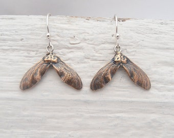 Organic Spring maple seeds in bronze