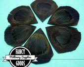6 - Black - Cut - Peacock Feather - Eyes -Petals - Millinery -Fascinators
