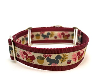 "1.5"" dog collar Squirrels are Nuts wide buckle or martingale collar"