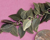 one foot of Antique brass chain with leaves 6x14mm
