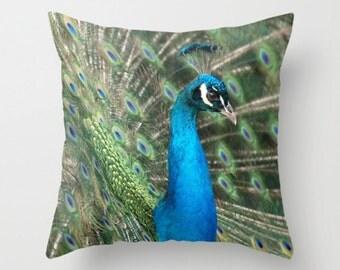 Pretty Peacock Pillow Cover Pillow Cover Natural History Blue Bird Ornithology Birding Bird Photography Peacock Photo
