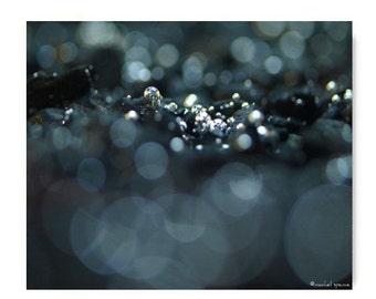 Pebbles Under Water Photographic Art Print Water Beach Sea Ocean River Marine Bokeh Natural History Original Art Print