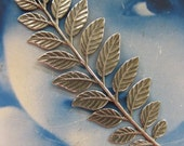 Silver Ox Plated Fern Branch Stamping Bent with holes or Straight 91SOX  x1