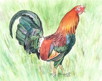 roosters, 8x10 giclee prints, colorful rooster art, rooster prints, kauai rooster art, kauai chickens, kitchen decor, kauai chicken art