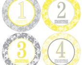 12 Monthly Baby Milestone Waterproof Glossy Stickers - Just Born - Newborn - Weekly stickers available - Design M019-02