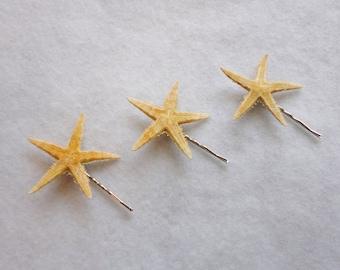 Wedding Bridal Natural Starfish  Bobby Pins Set of 3