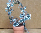 Miniature ivy