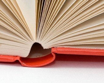 Include the inside pages of my book - DIY Book Page Crafts