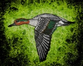 Green Winged Green-winged Teal Duck Iron On Patch ducks flight teals wing pond duckling embroidered Jacket Back HUGE