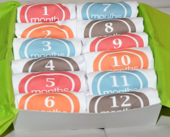 12 Month baby bodysuit GIFT Set - Select Any 12 month iron on set - FREE SHIPPING