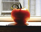 Tomato in the Window --- Digital painting image download--- modern photo painting by DylanD