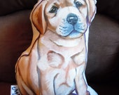 Ready to Ship...Yellow Lab Pillow / Sky Blue back