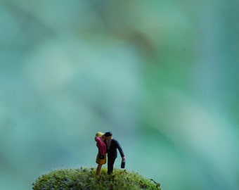 tiny loving couple for terrariums and other crafty creations