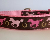 Dog Collar, Horses, 1 inch wide, quick release, metal buckle, chain, martingale, hybrid, adjustable, nylon