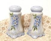 Vintage Blue Salt & Pepper Shakers, Porcelain Handpainted Floral