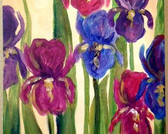 Field of Iris by Kristen Dougherty