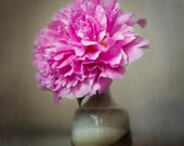 Flower Photography Print, Pink Peony Photograph, Still Life Photo, Honeysuckle Pink, Vibrant Color, Modern Home Decor, Wall Art