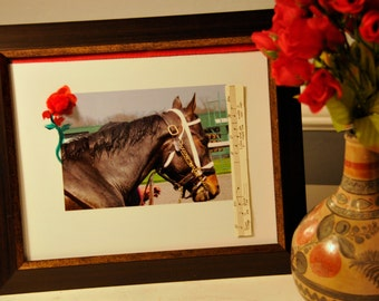 SALE! Kentucky Derby racehorse Bold Twice 11 by 14 inches framed