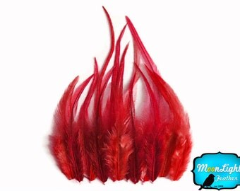 Rooster Feathers, 12 Pieces - SHORT SOLID RED Rooster Hair Extension Feathers : 572