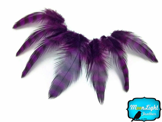 Chicken Feathers, 12 Pieces - PURPLE Grizzly Hen Loose Craft Feather : %