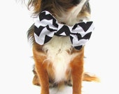 Dog Bow Tie- Clip On- Black and White Chevron. Size Large