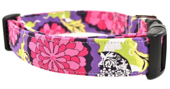Floral Dog Collar - Purple Zinnia