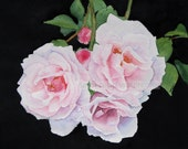 pink roses watercolor flower painting