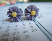 Plugs - Gauges - Purple Daisy
