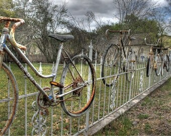 Bike photography, fine art photography, bicycle photography, bike photo, bicycle photo, home decor, rusty bike photo, Fence photo, Salado