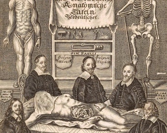 Medical print  teaching surgery antique steam punk skull anthropology goth