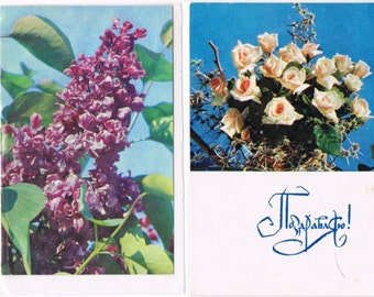 12 Vintage Flower Postcards - Flora - Germany and Eastern Europe